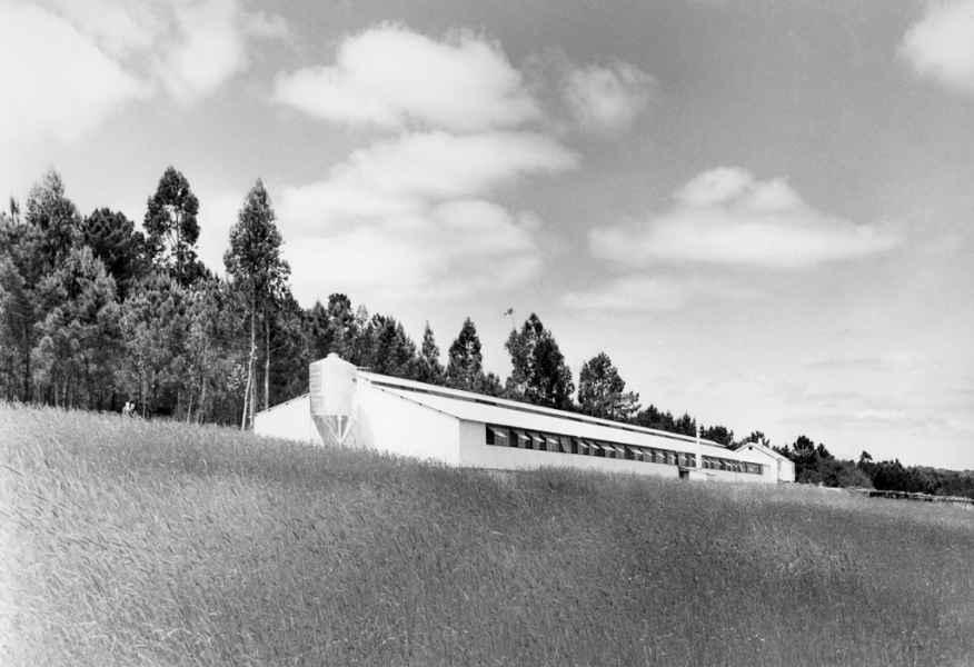 Vista do galiñeiro de 80.000 polos do Grupo Sindical de Colonización nº 7247. Teo (A Coruña), 1970